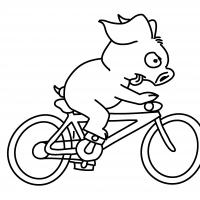 Richtig reizende Radtouren